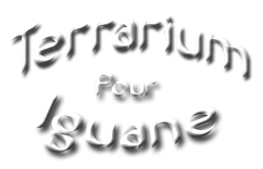 Terrarium Iguane